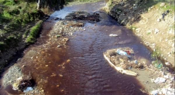 ΟΙΚΟΣΥΛ: Απόβλητα Ελαιοτριβείων και ρύπανση φυσικών αποδεκτών