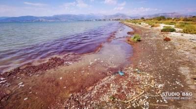 Απίστευτο! Δείτε γιατί «μάτωσε» η θάλασσα στη Νέα Κίο!