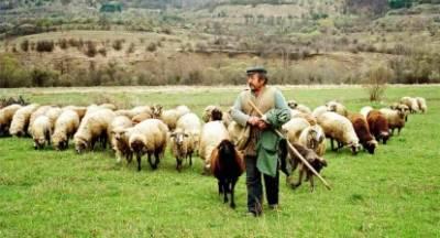 ΣΥΡΙΖΑ: «Ανικανότητα η αδιαφορία της Κυβέρνησης για τους Κτηνοτρόφους;»
