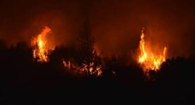 Μεγάλη φωτιά στις Μαριές Ζακύνθου (video)