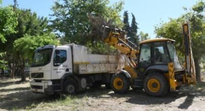 Πάτρα: Έκκληση στους δημότες να μην ρίχνουν ανεξέλεγκτα οπουδήποτε, κλαδιά και ογκώδη απορρίμματα