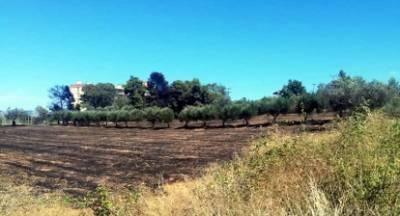 Πυρκαγιά κοντά στην δομή προσφύγων στο Κρανίδι