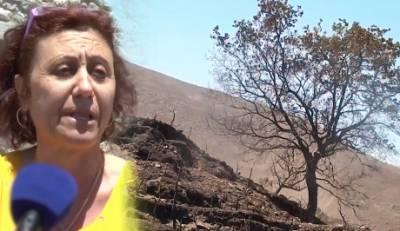 Μάνη 2017: «Καήκαμε αβοήθητοι! Αν είχες «μέσον» έσωζες το σπίτι σου…» (video)