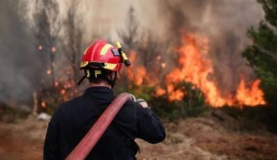Ενημέρωση μέσα από τις φωτιές της Πελοποννήσου!