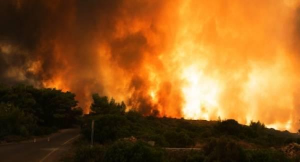 Μήνυση για τη φωτιά του 2017 υποβάλλει ο δήμαρχος Κυθήρων