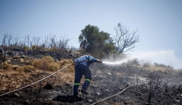 Υπό έλεγχο η πυρκαγιά στην Δροσοπηγή της Ανατολικής Μάνης