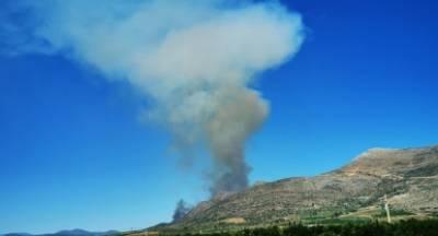 Πυρκαγιά στις Μυκήνες. Εκκενώθηκε ο αρχαιολογικός χώρος (video)