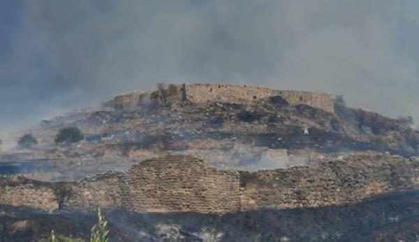 Πέρασε μέσα από τον αρχαιολογικό χώρο η πυρκαγιά στις Μυκήνες. Τραγικές εικόνες