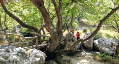 Σε μοναδικό προορισμό εξορμά ο Ορειβατικός Καλαμάτας