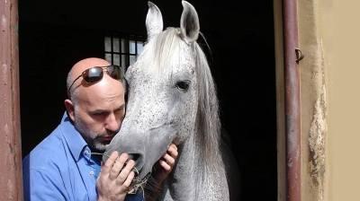 Ο Μεσσήνιος κτηνίατρος που εμπιστεύεται τα  άλογα του ο Σουλτάνος του Ομάν!
