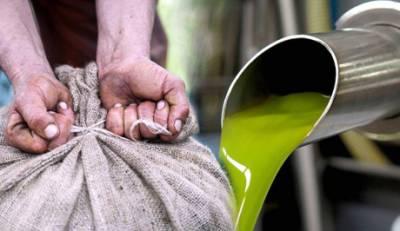 Λίγα τα χέρια, αρχίζουν τα test, καλά τα λεφτά, σε ελιά και λάδι Πελοποννήσου!