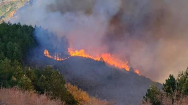 Πυρκαγιά στον Πάρνωνα