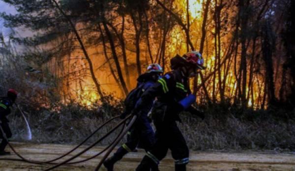 Ενισχύονται οι δυνάμεις στη πυρκαγιά που καίει δάσος του Πάρνωνα!