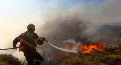 Καίει ακόμα η φωτιά στο δάσος του Πάρνωνα!