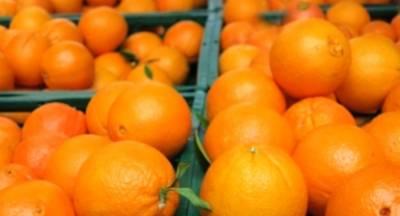 Η αγορά πιέζει την τιμή του πορτοκαλιού με σύμμαχο την Ισπανία