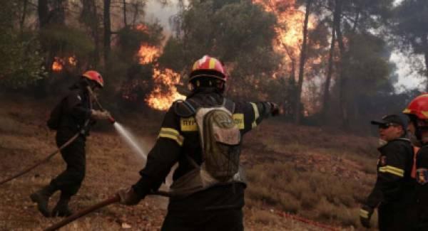 Πυρκαγιά στην Περδικόβρυση Κυνουρίας