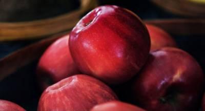 Απάντηση Βορίδη σε Βελόπουλο: «Να μην ανησυχούν οι μηλοπαραγωγοί της Κορινθίας»