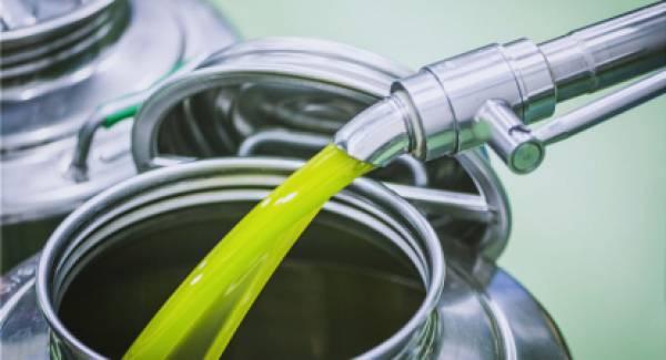 Agronews.gr: Αύξηση εξαγωγών 5% και τζίρων στο ελαιόλαδο βάσει υπολογισμών της Κομισιόν