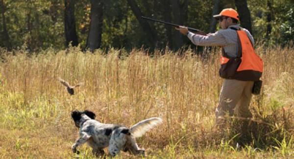 Επιτρέπονται ξανά το κυνήγι και το ψάρεμα