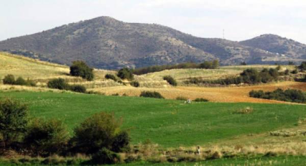 Η Ένωση Ιδιοκτητών Αγροτικών Ακινήτων Ελλάδας κακίζει τον ΣΥΡΙΖΑ