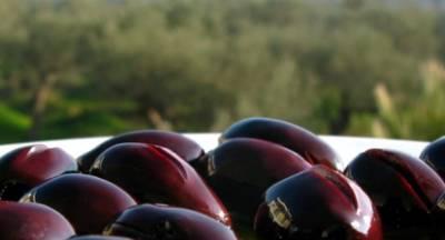 Ελιά Καλαμών: Φήμες για επικείμενη σκούπα στα περσινά με 1€