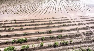 Αραχωβίτης: Βούλιαξαν στα πλημμυρισμένα και παρασύρουν την αγροτιά