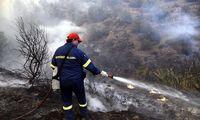 60 στρέμματα έκαψε η φωτιά σε Αλαγονία και Νέδουσα Ταϋγέτου