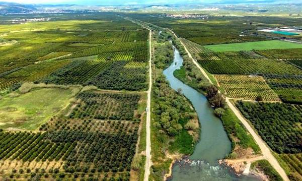 WWF: Διάταξη νομοσχεδίου καταστρατηγεί τους νόμους για τις περιοχές Natura!