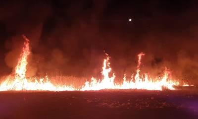 Φωτιά στα Βέρβενα Κυνουρίας (photos - video)