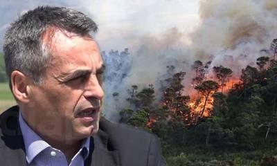 Πυρκαγιά σε δάσος από πεύκα και βαλανιδιές κοντά στη Μεγαλόπολη! (audio)