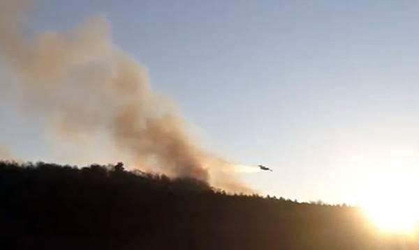 Σεύφεση η πυρκαγιά στο Βαλτέτσι Αρκαδίας. Έχει κάψει 450 στρέμματα δάσους! (video)