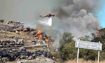 «Η Περιφέρεια Πελοποννήσου είναι έτοιμη για της πυρκαγιές της περιόδου;»