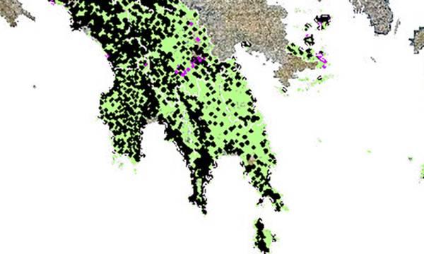 Π.Ε. Λακωνίας: Δασικός χάρτης και υποβολή αντιρρήσεων