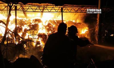 Καταστροφική η πυρκαγιά σε φάρμα βοοειδών στο Άργος (photos/video)