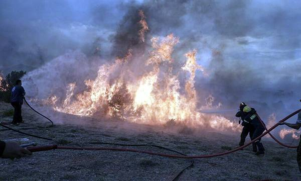 Πυρκαγιά σε δασική έκταση στη Ζαραφώνα Λακωνίας