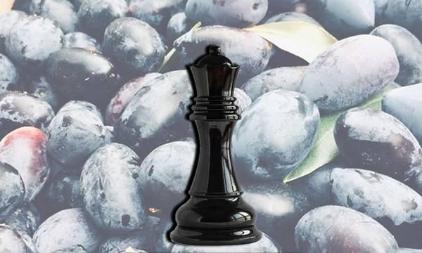 Έκκληση Πετράκου σε Νίκα: Τώρα να προστατεύσουμε τη «Μαύρη Βασίλισσα» - Ελιά Καλαμάτας ΠΟΠ!