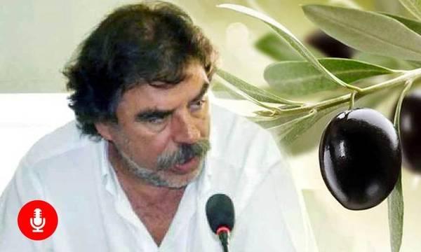 Χρυσαδάκος: Με πολιτική απόφαση, να καταργηθεί η ρύθμιση Αποστόλου για το ΠΟΠ Καλαμάτας (audio)