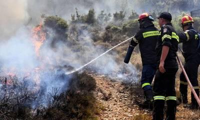 Σε εξέλιξη πυρκαγιά στη Ζούπενα του Δήμου Σπάρτης