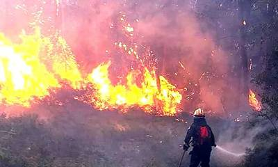 Mεγάλη φωτιά στα Τρόπαια Γορτυνίας! (photos - video)