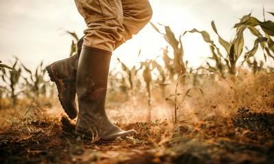 Αραχωβίτης: Το πρόγραμμα των Νέων Αγροτών καταδικάζει σε γήρανση και μαρασμό τις αγροτικές περιοχές