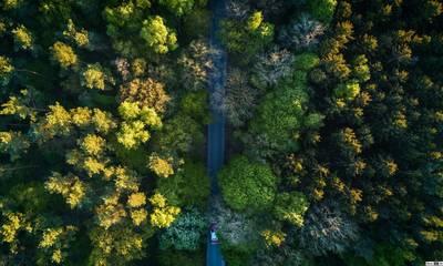 Δασικοί χάρτες: Παράταση 6 μηνών στη διαδικασία υποβολής αντιρρήσεων