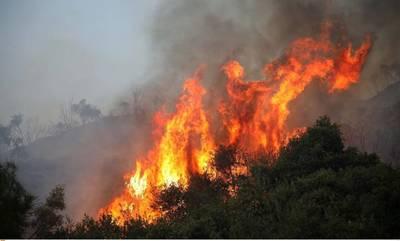 Πυρκαγιά στον Αγ. Ανδρέα του δήμου Ευρώτα
