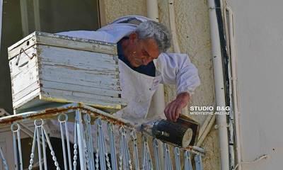 Μέλισσες έφτιαξαν φωλιά σε μπαλκόνι στη συνοικία Πρόνοια του Ναυπλίου