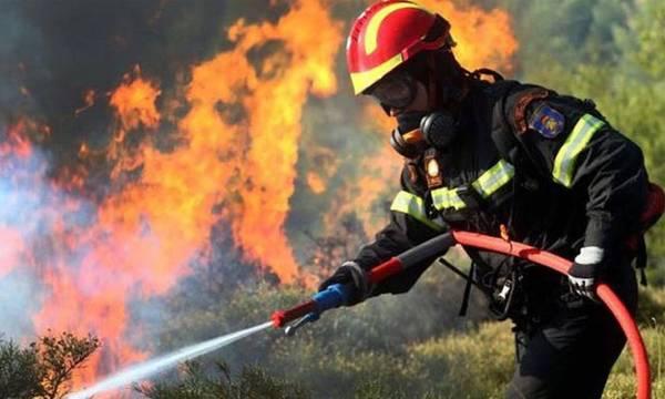 Προσοχή μέχρι τις 15 Απριλίου! Πυρκαγιές στον Δήμο Σπάρτης και συμβουλές πυροπροστασίας