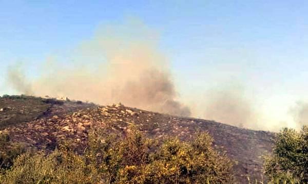 Υπο έλεγχο η πυρκαγιά στη Δίχοβα Μάνης. «Έπεσε» σε ρέμα και η Πυροσβεστική το εκμεταλλεύτηκε