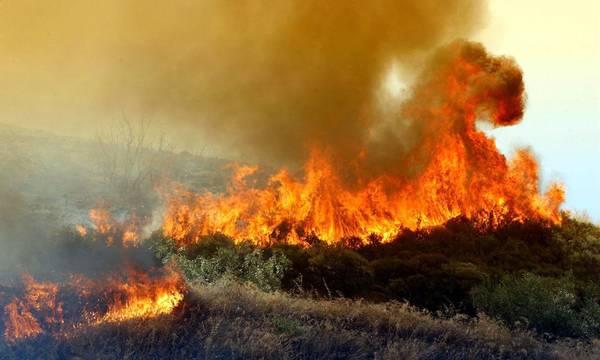 Σύσκεψη για την αντιμετώπιση της απειλής των πυρκαγιών στη Σπάρτη