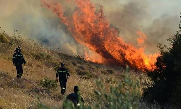 Μάνη: Μαίνεται η φωτιά που ξέσπασε στην περιοχή Κοκκάλα