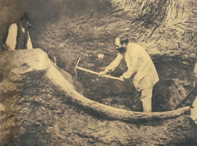 Μεγαλόπολη 1902. Ανασκαφή μαμούθ από τον καθηγητή Θεόδωρο Σκούφο