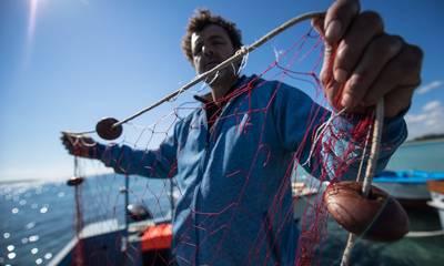 Διαδικτυακό Πανεπιστημιακό Πρόγραμμα για τη μικρή παράκτια αλιεία