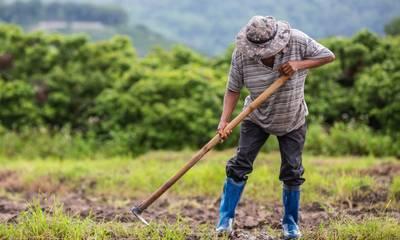 Τι γίνεται με τους μετακλητούς εργάτες γης και το ΟΣΔΕ 2021
